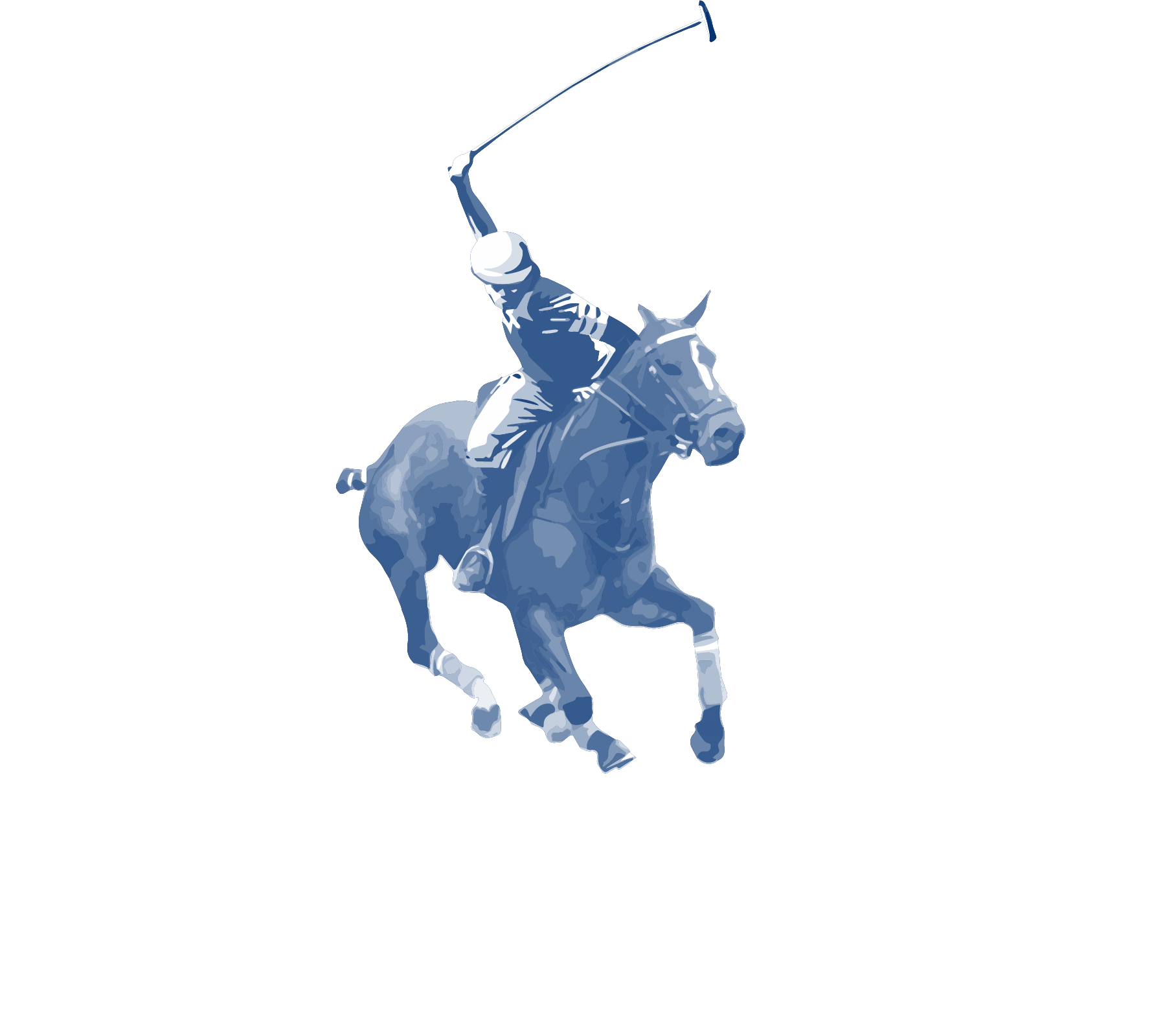 NSW Polo Association